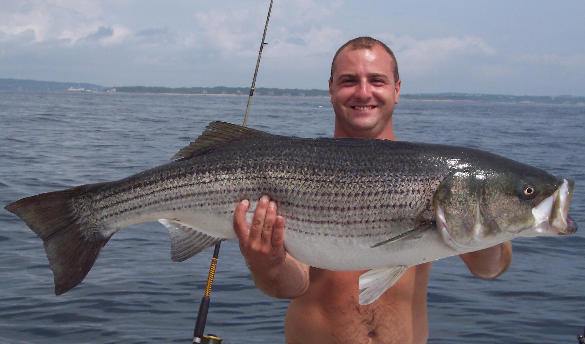 striped bass striper fishing charters gloucester